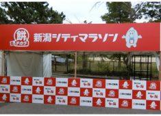 佐藤食品工業様 新潟シティマラソン パネル