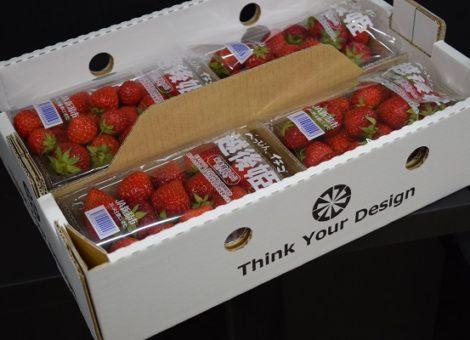 宙吊り型 イチゴ箱