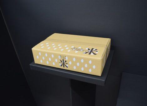新潟産米用 段ボールケース (米柄)