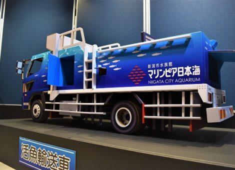 マリンピア日本海様 活魚輸送車