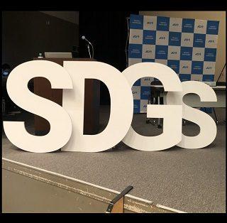 特大 イニシャルオブジェ (SDGs)